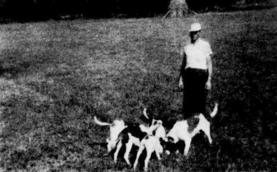 Alvy Boyd and some of his fox hounds.